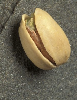 Pistachio- cancer fighting nut