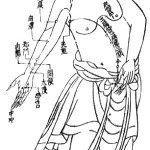 acupuncture chart of the xin bao luo