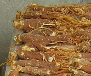 Ginseng for energy or acupuncture?
